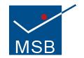 MSB Beratung